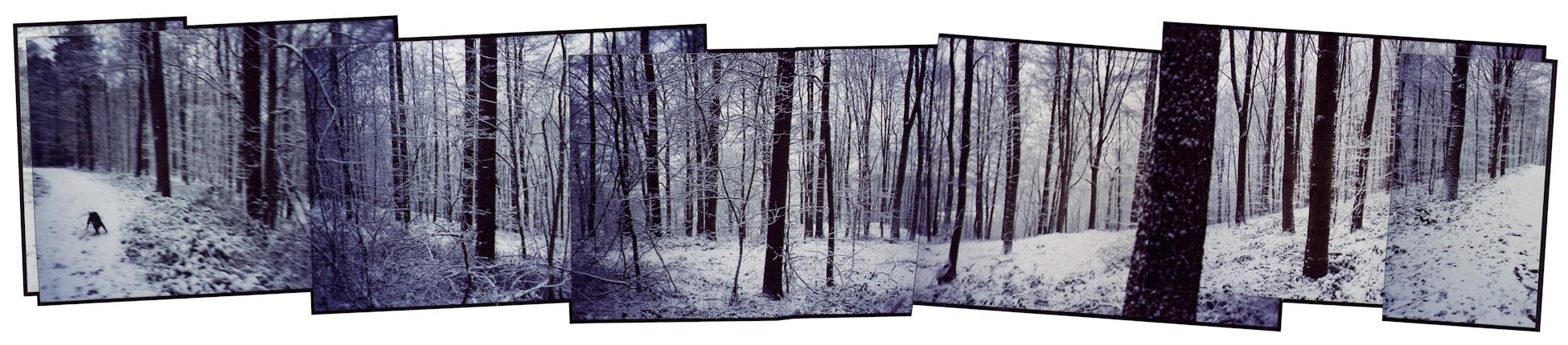 Panoramique n°161 - Nouvel an ( janvier 2004)