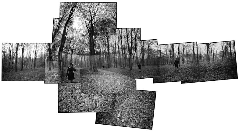 Panoramique n°299 - Gaume (novembre 2004)